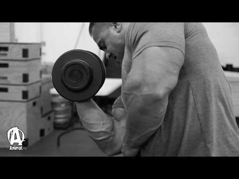 Olympia GUNS and DELTS With Evan Centopani