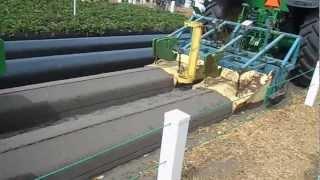 Технология выращивания клубники (florida strawberry festival 2013)
