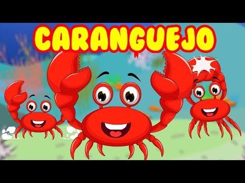 Caranguejo peixe é - Roda Roda Roda - 30 Minutos de Música Infantil - Canções Populares