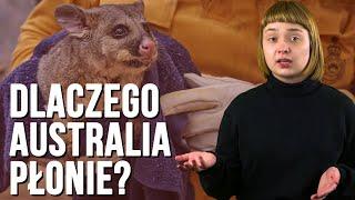 Pożary w Australii - przyczyny, skutki, rozwiązania