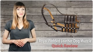 Royal Leather Dog Muzzle With Perfect Air Circulation - Fordogtrainers Review