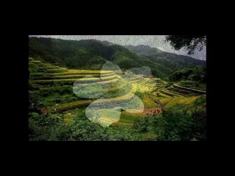 Văn Cô Bé Suối Ngang - Khắc Tư - Lương Trọng Quỳnh