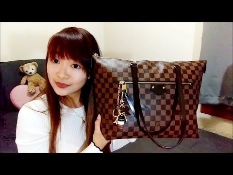 FAKE Louis Vuitton Iéna MM (Joy replica) | Review & What fits | Cles | Double Zippy Wallet