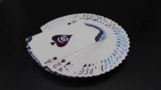 Video: The Seers by Saxon Playing Cards
