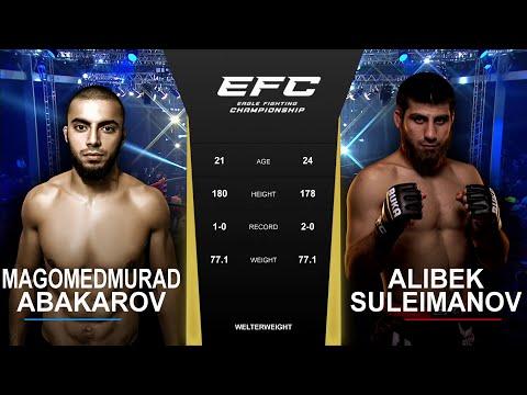 Претендент на пояс? | EFC 42: Алибек Сулейманов - Магомедмурад Абакаров