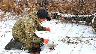 Зимняя рыбалка на окуня. Ловля на ратлины и мормышку. Зимняя сказка на нижней Волге.