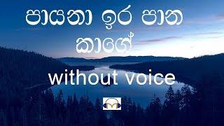 Payana Ira Pana Kage Karaoke (without voice) පායනා ඉර පාන කාගේ