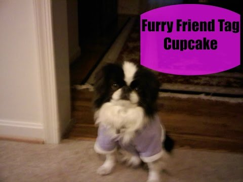 Furry Friend Tag- Cupcake