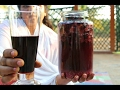 HEALTHY HOME MADE RED WINE | HEALTHY GRAPE WINE | VILLAGE FOOD Mp3