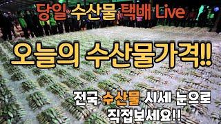[수산물시세정보]  1월14일 수산물가격정보 택배가격 …