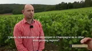 2. Terre de Champagne - Tourisme - Tourism