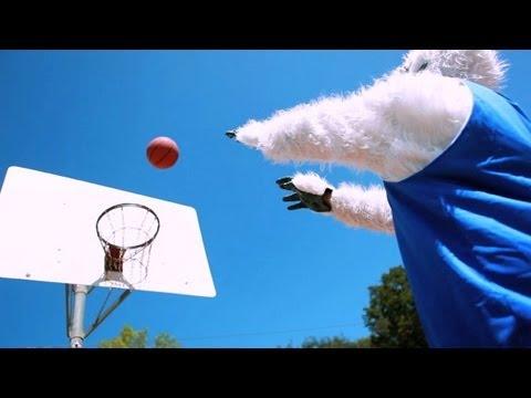 Yeti Basketball - Yeti Basketball