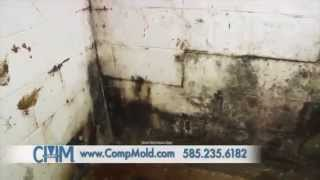 Mold Removal/Customer Home Commercial, Comprehensive Mold Management