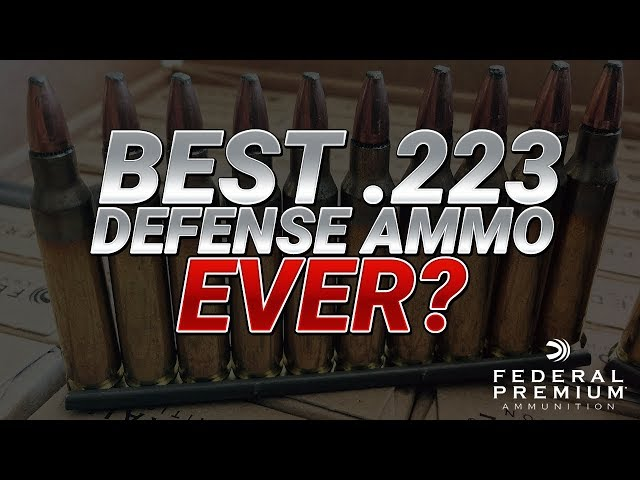 Best .223 Defense Ammo Ever? Federal 5.56mm 62gr FBIT3 Gel Test