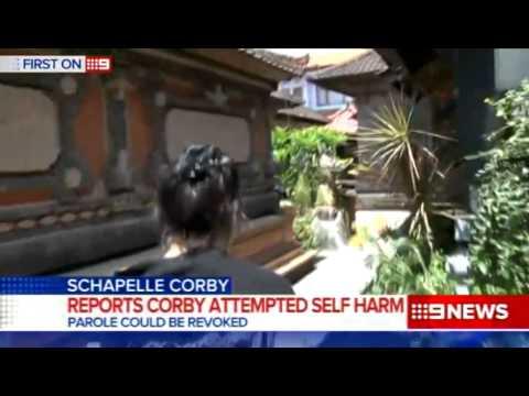 Schapelle developments | 9 News Perth