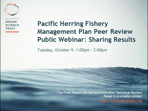Pacific Herring Fishery Management Plan Peer Review
