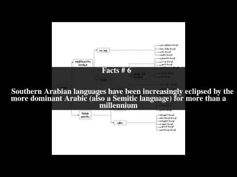 South Semitic languages Top # 9 Facts
