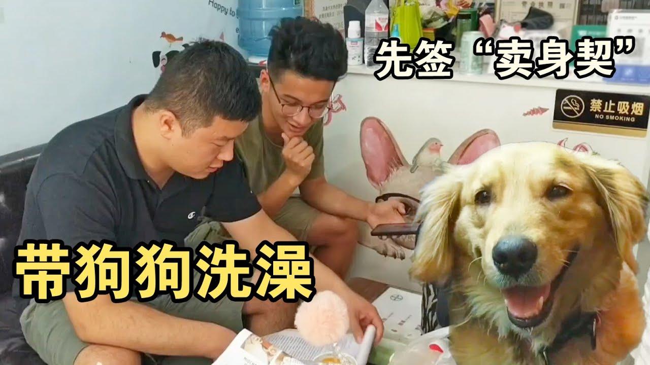 带狗狗洗澡老板说是不是找事?差点动手!老板被整不是一两次了
