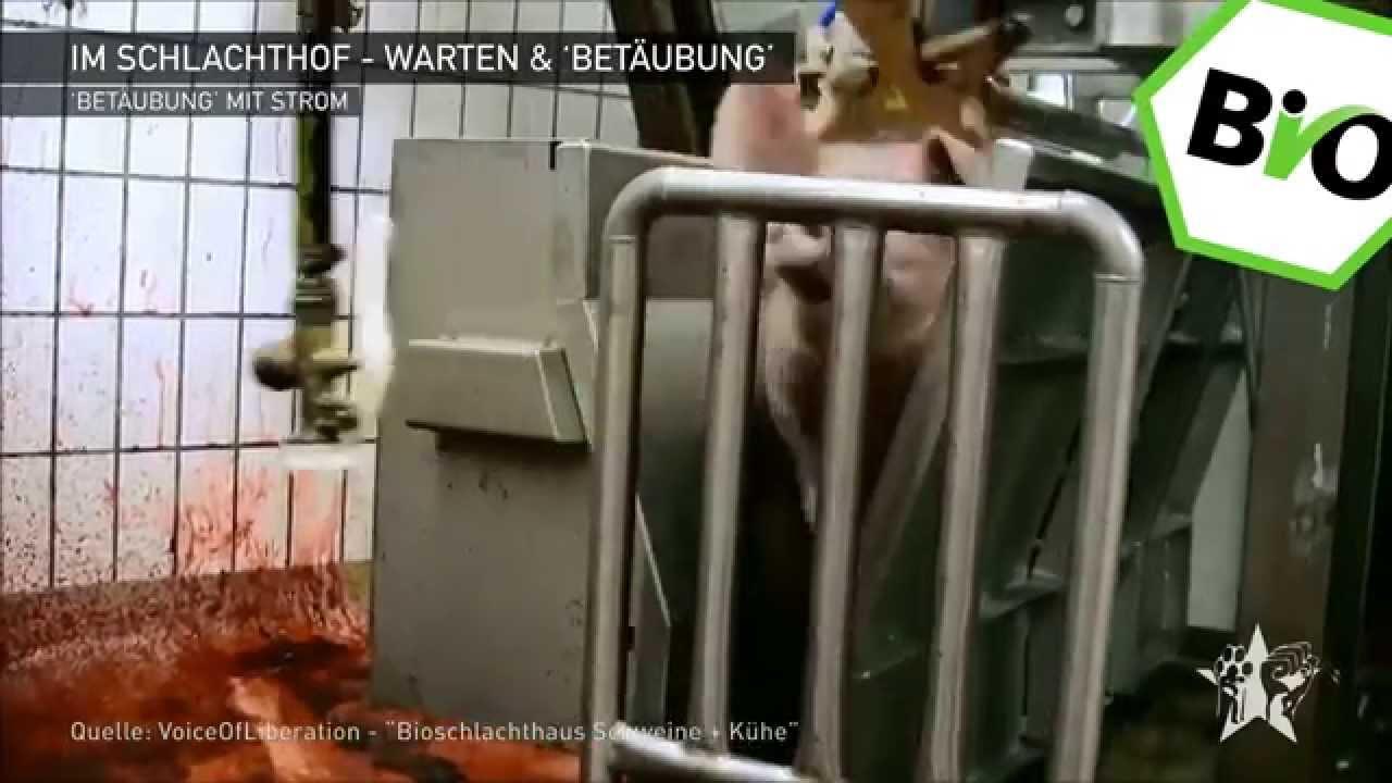 Waldkraiburg Schlachthof