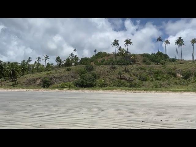 Praia do Camacho, em Maragogi, Alagoas.
