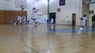 Tae Kwon Do Pee Wee Green & Yellow Belt Forms Competition
