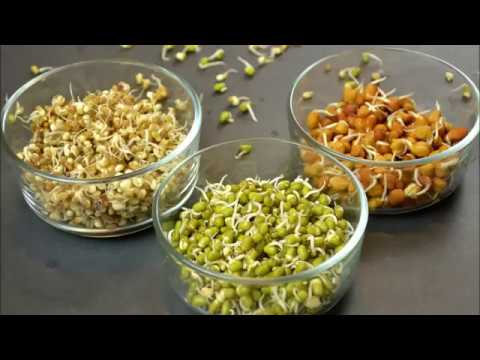 SPROUTS IN TWO DIFFERENT WAYS | Good For Hair, Skin And Health
