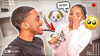 SURPRISING MY GIRLFRIEND WITH A NEW PUPPY!! *EMOTIONAL*