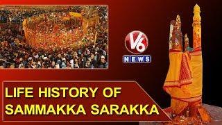 Medaram Jatara 2018 | Brief Life History Of Sammakka Sarakka | V6 News