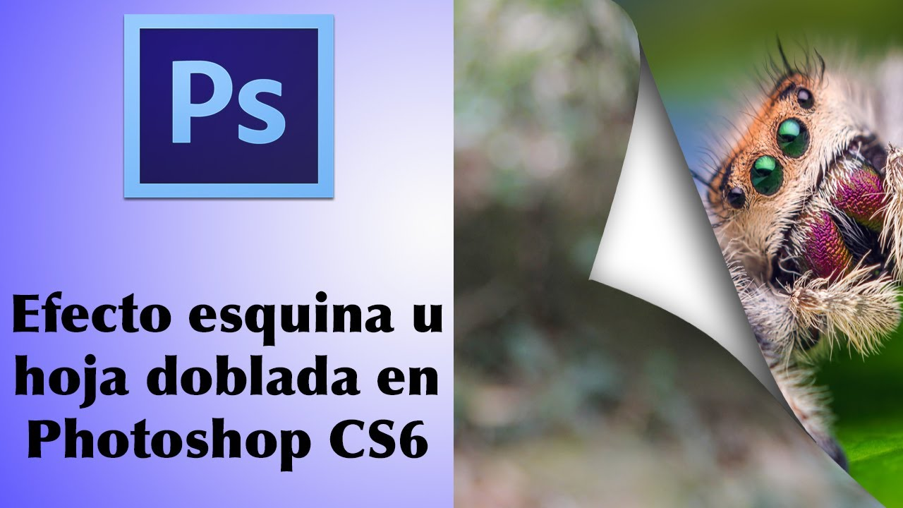 PHOTOSHOP FREE TRIAL LENGTH