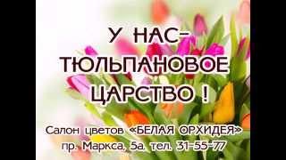 Тюльпаны в Омске купить(Роскошные омские тюльпаны купить в Омске можно в салоне БЕЛАЯ ОРХИДЕЯ 31-55-77 http://w-orhidea.ru/main/tyulpanyi-ot-beloy-orhidei.html., 2015-01-28T10:03:21.000Z)