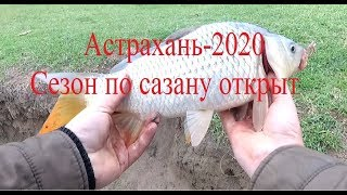 22 Первый сазанчик 2020 года на снасть пробку на червя Рыбалка на жмыхоловку