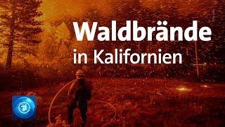 Zehntausende Kalifornier fliehen vor Waldbränden