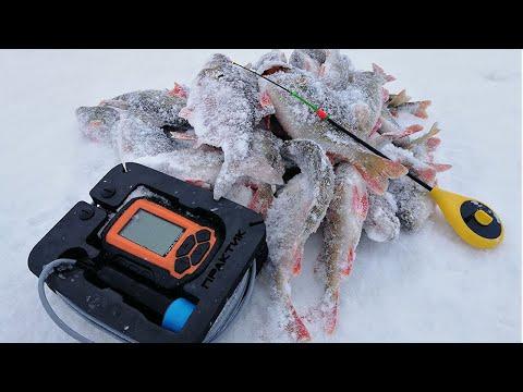 РЫБАЛКА С ЭХОЛОТОМ ПРАКТИК! Зимняя рыбалка, окунь и плотва на безмотылку
