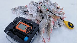 РЫБАЛКА С ЭХОЛОТОМ ПРАКТИК! Зимняя рыбалка 2020, окунь и плотва на безмотылку