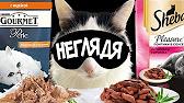 Грандорф корм покупайте по недорогой цене ✌ в зоомагазине. Sensitive сухой беззерновой корм класса холистик для кошек белая рыба с бататом.