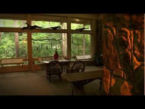 Vulcan Media - Video Production - Birmingham, AL - Alabama Wildlife Center Welcome Video