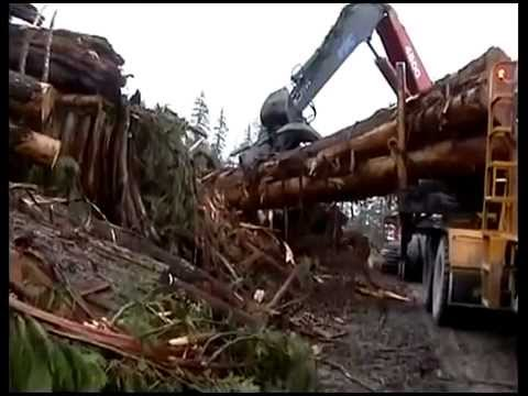 Extreme Logging Vancouver Island