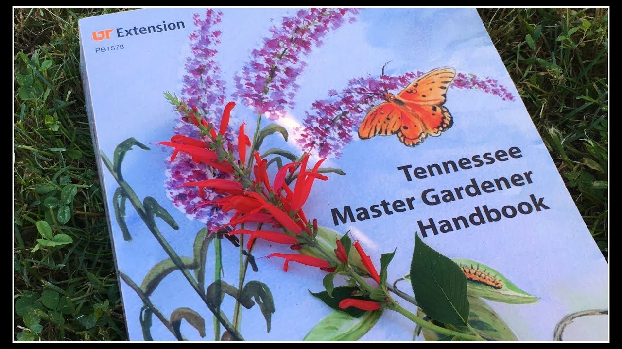 Should You Become A Master Gardener?