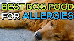 Best Dog Food for Skin allergies 2020. Top 5 best dog food for allergies (Update)