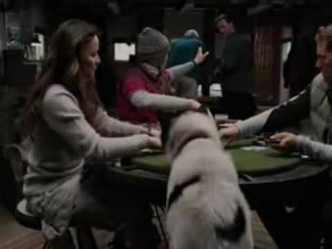 Eight Below - Part 1
