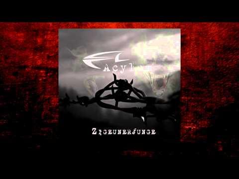 Acylum - Zigeunerjunge (Cold Therapy Remix)