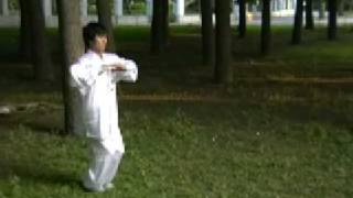 Xing Yi Quan: 5 Element Linking Fist