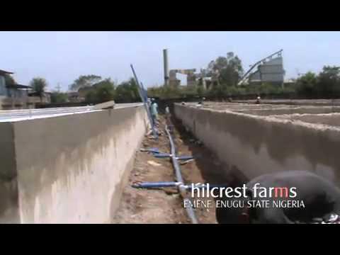 HILCREST FARMS EMENE, ENUGU STATE, NIGERIA