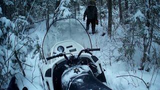 Снегоход Тайга Варяг 550 в лесу