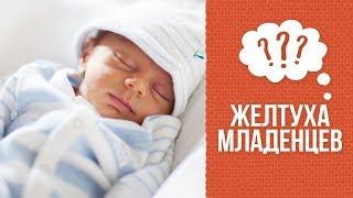 почему желтуха у новорожденных