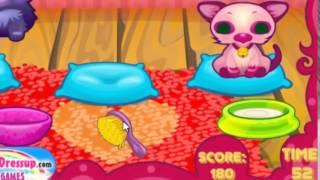 Уход за милыми котятами - игра для девочек