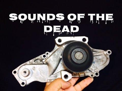 Bad Water Pump - Sound of a Bad Bearing - Symptoms Bad Bearing - Idle Squeal Bad Water Pump