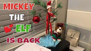 Return of Mickey the Elf - Elf on a Shelf