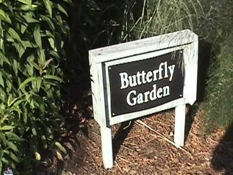 Raleigh Tourism : Raleigh Tourism: K.C. Ralston Arboretum