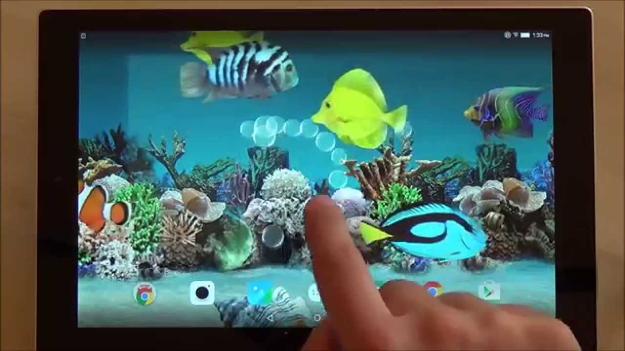 Coral fish 3D live wallpaper for Android phones and tablets - YouTube